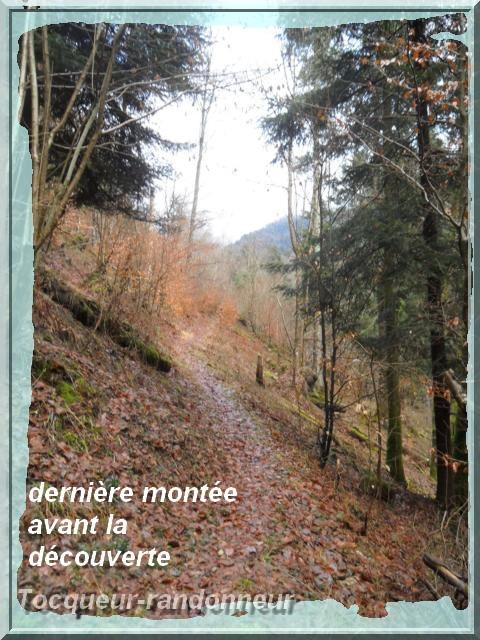 Cascade du Bruscher 19-d-cembre-2012le-braun-011-3a8bd9d