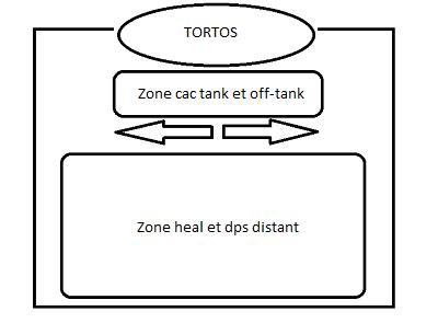 4. Tortos la tortue Sch-ma-tortos-3cf4876