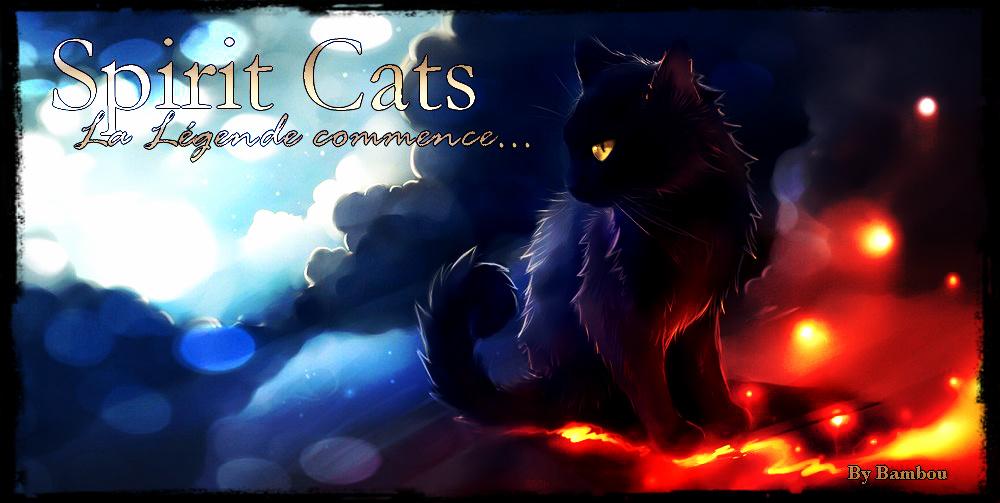 Spirit Cats Index du Forum